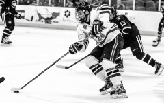 Why Hockey Needs to Be More Recognized in the South