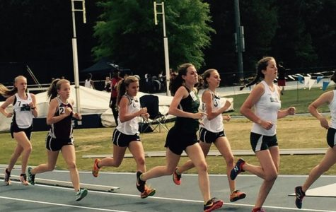 Track and Field Crushes State Meet