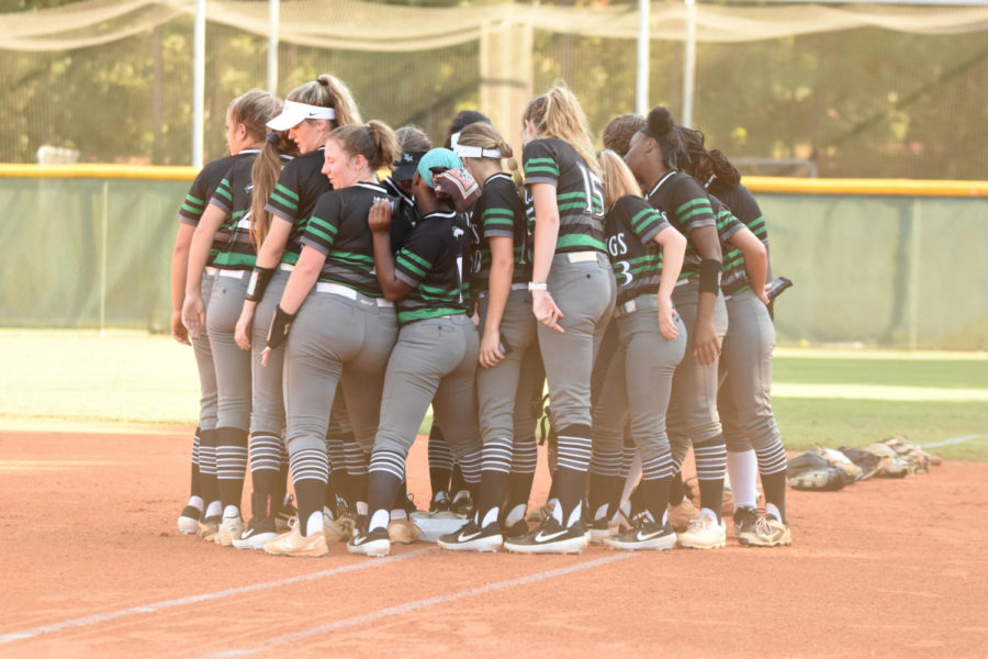 Mustang Softball: The Quest for Columbus